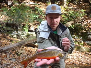 Fine Garrett County brook trout with all it's autumn colors.